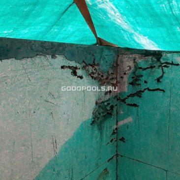 Муравьи прогрызли норы в пенополистироле